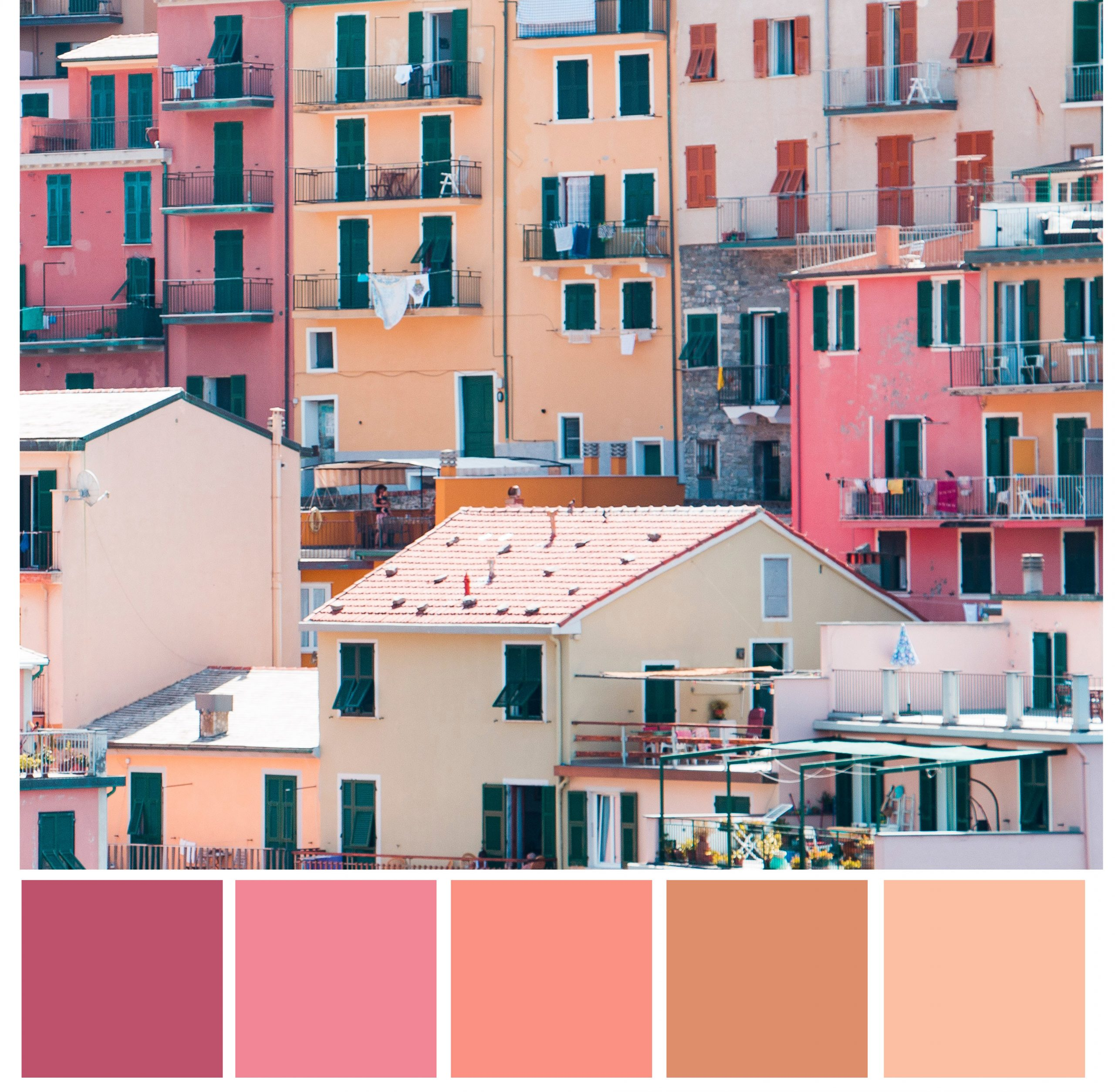light red, orange color palette