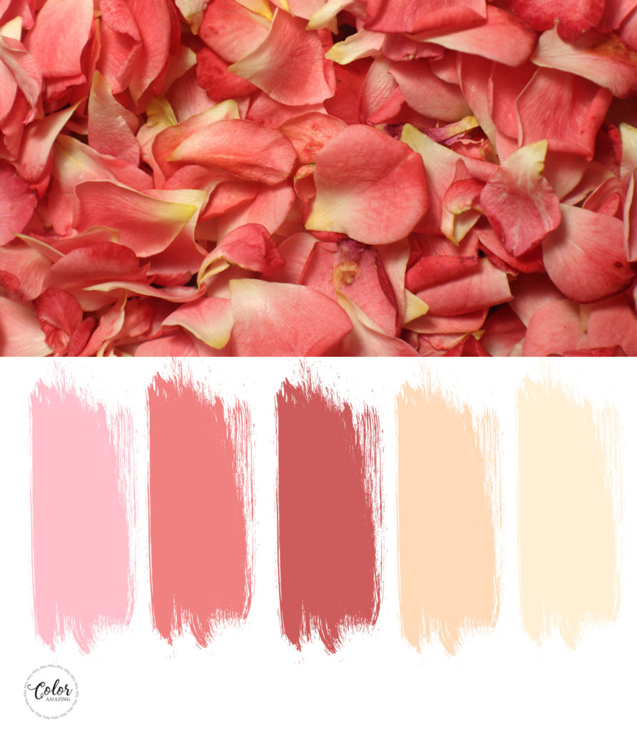 color scheme with light coral, pink indian red and peachy yellows