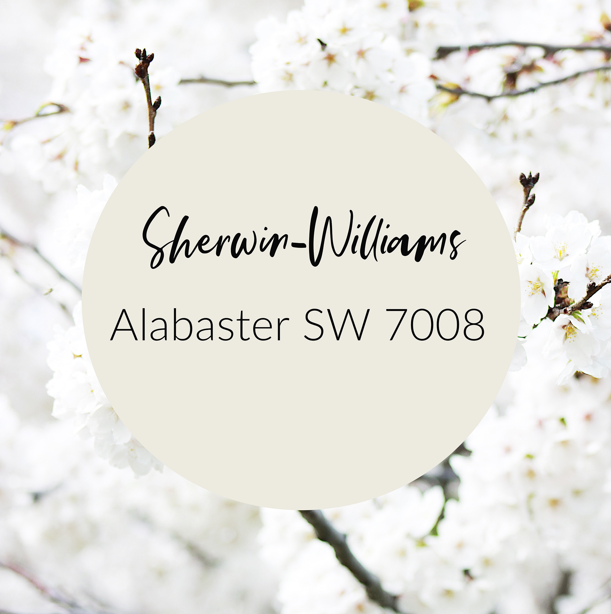 alabaster sherwin williams