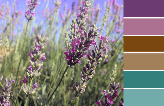 color palette violet, colors that go with purple