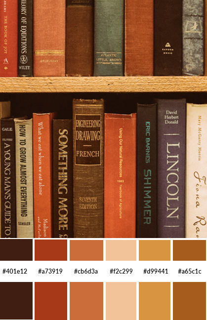 color palette orange, muted color scheme. burnt orange, library color scheme, brown color scheme., monochromatic color palette, color codes, color hex codes